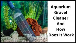 Aquarium Gravel Cleaner And How Does It Work